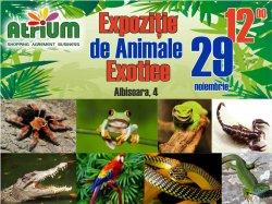 """Не пропустите выставку экзотических животных в ТЦ """"Atrium"""""""