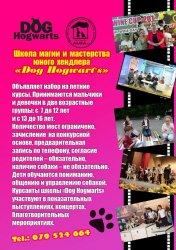 Афиша мероприятий для детей с 11 по 20 мая 2015 года.