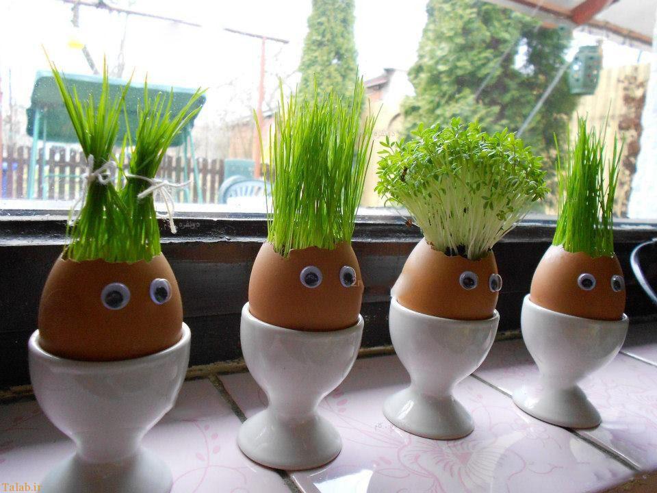 Забавные человечки в яичной скорлупе