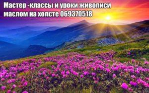 13124612_571896772969151_182347317275586715_n