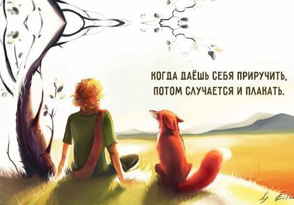 Читать или не читать «Маленького принца» и в каком возрасте.