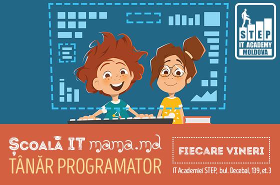 IT Școala Mama.md - Tânărul programator