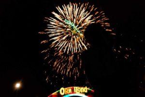 ОрхэйЛэнд открылся в День защиты детей.