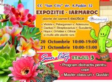 """Expoziție neobișnuită - târg de flori în centrul comercial """"Sun City"""" (RO)"""