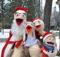 Коко-ся,страусята и Вовка в парке Пушкина на прогулке!