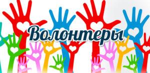 Ищу помощников- волонтеров для сайта !