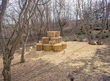 Кишиневский зоопарк. У волков новый дом.